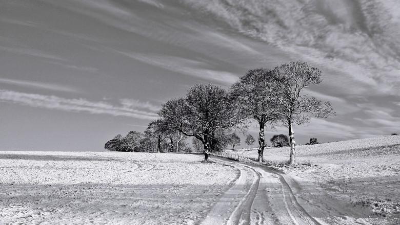 iarna-38429