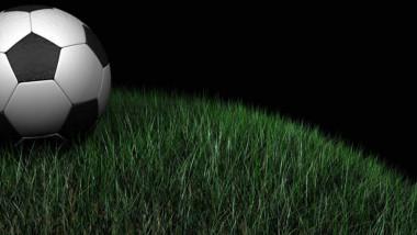 soccer 20ball 20in 20grass-36042