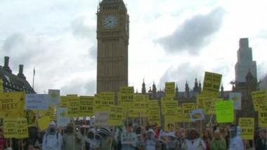 """Protest al apicultorilor în Marea Britanie: """"Bee wise"""""""