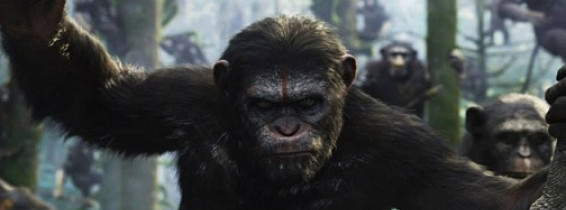 dawn-planet-of-the-apes-release-date-photo
