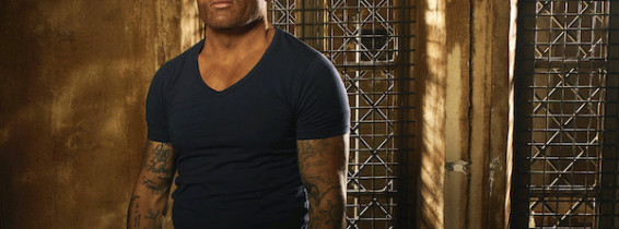 dominic purcell prison break
