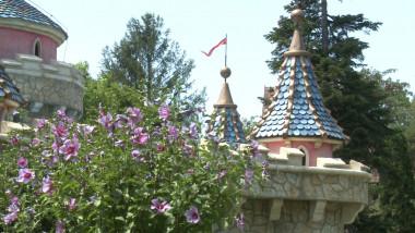 castelul 2