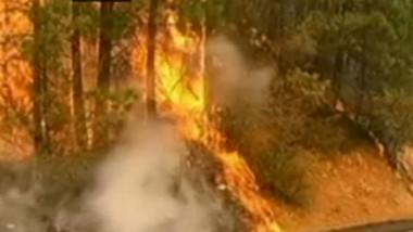 incendiu yosemite