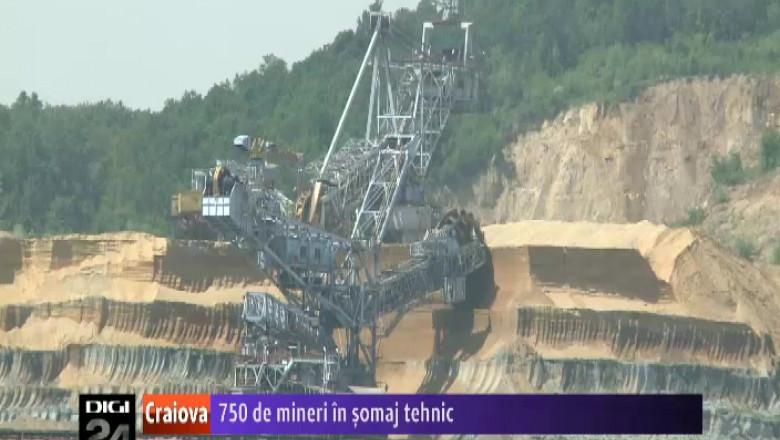 290813 mineri somaj
