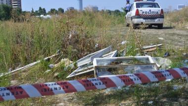 politie ancheta caini mediafax