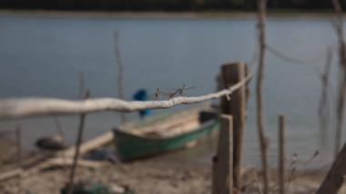 dunare barca
