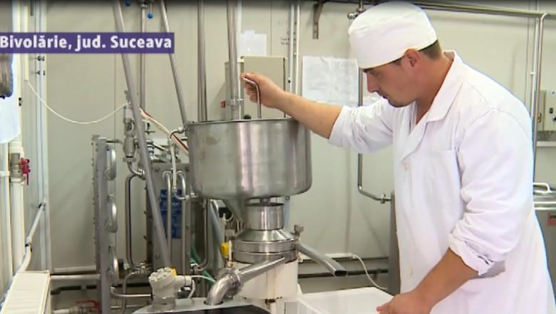fabrica lapte cu ureche