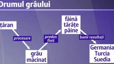 paine-2