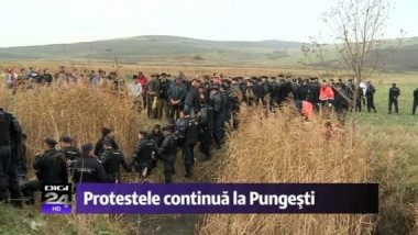 protest pungesti