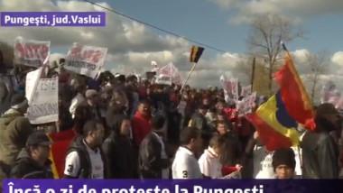 protest pungesti steaguri2