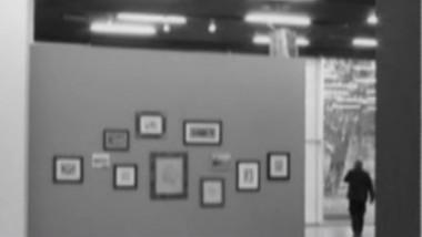 furt tablouri camere