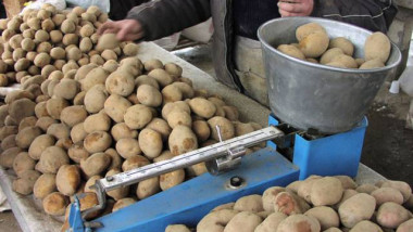 2011-07-2823 ro ZA taraba cartofi FP