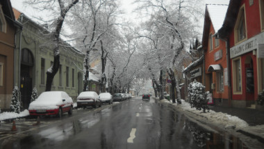 zapada ninsori Oradea