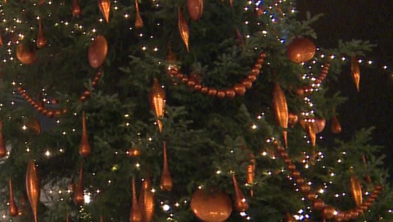 ornamente in brad