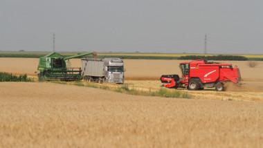agricultura - 5345942-Mediafax Foto-Gabriel Petrescu
