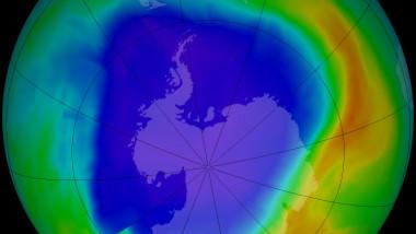 ozone omi 2013259-1