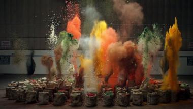 condimente culori