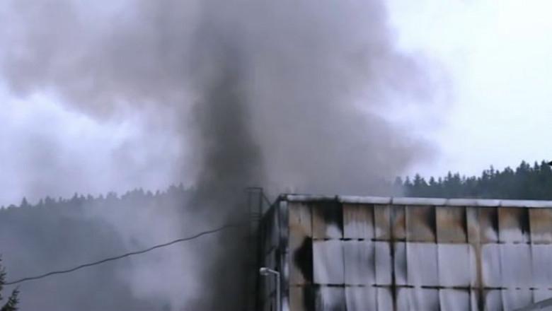 toxic aro