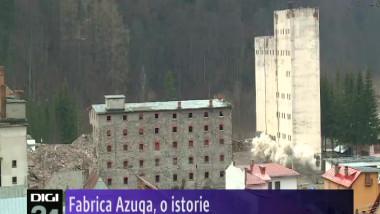 AZUGA CAZUTA