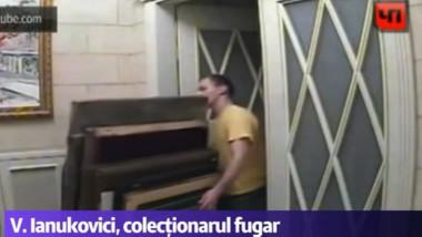 ianukovici colectionarul fugar