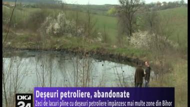deseuri petroliere 280314