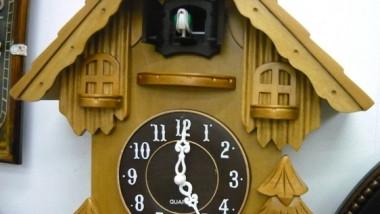 gallo-ceas-cu-cuc 289298