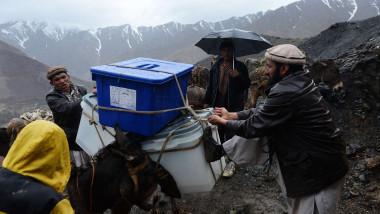 afganistan campanie electorala cu magarul - 6634816-AFP Mediafax Foto-SHAH Marai