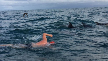 adam-walker-open-water-swimming