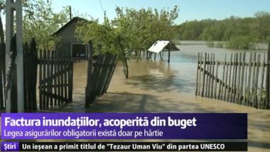 inundatii gard picat