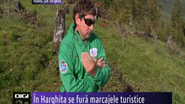 MARCAJE HARGHITA