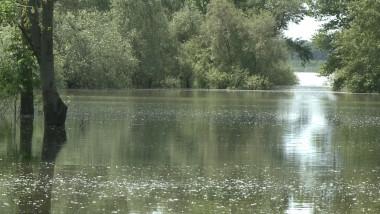 dunare inundatii-2