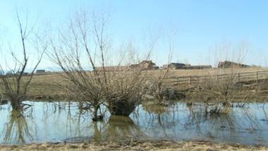 inundatii-camp