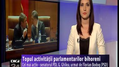 vo plasma activitati parlamentari