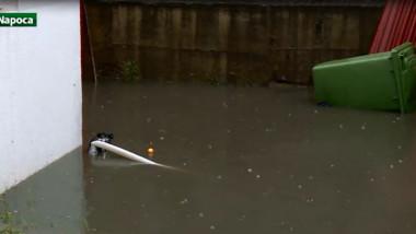 curte inundata