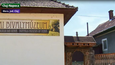 muzeul bivolului mera