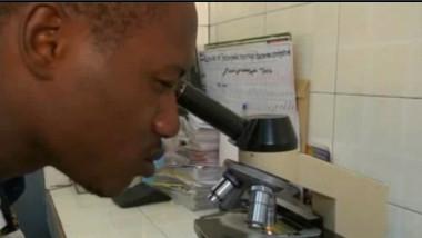 negru la microscop