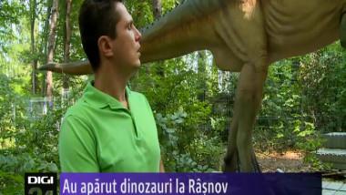 DINOZAURI RASNOV