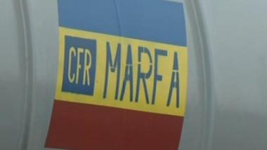 cfr marfa logo crop