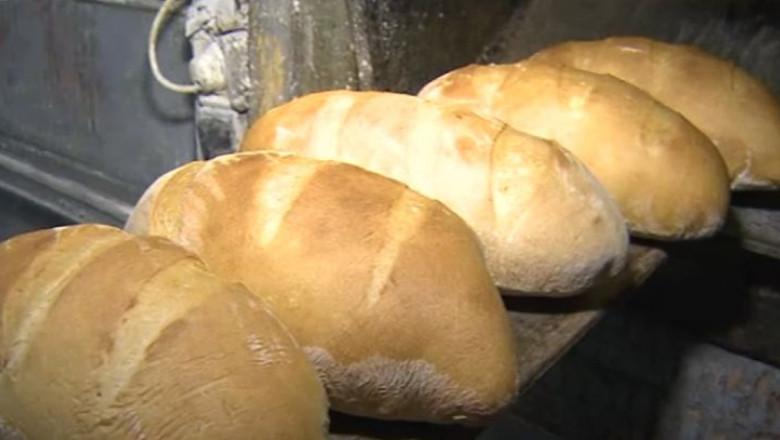 paini cuptor de paine - captura