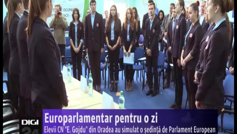 europarlamentari Gojdu 061014