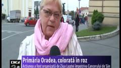 primarie roz 021014