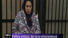 031114 vot palilula