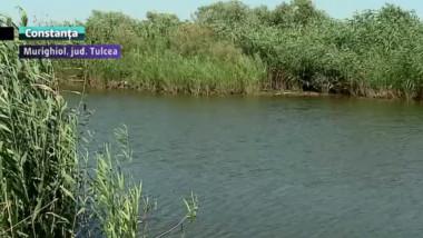 delta murighiol