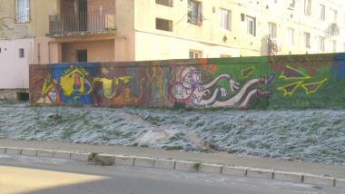 zid pictat5