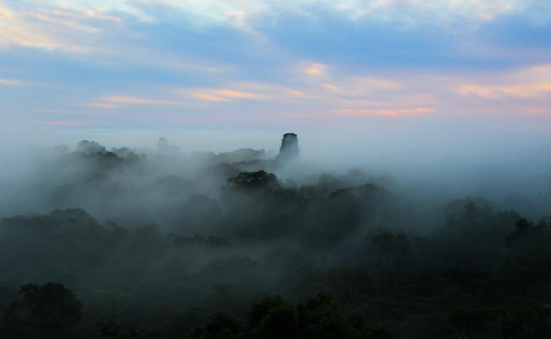 jungla guatemala amazon templu tikal maya