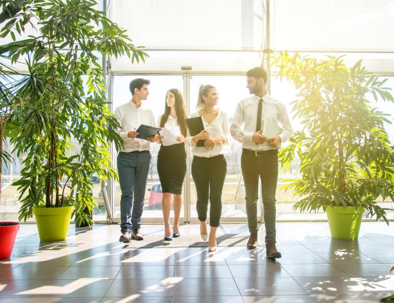 companie cu 4 angajati care merg in lobby printre plante