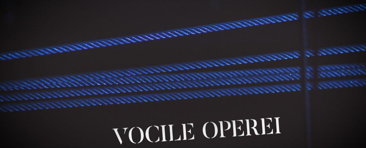 VOCILE OPEREI