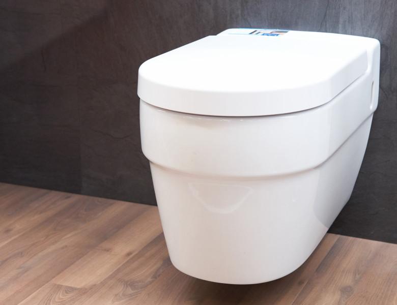 vas de toaleta