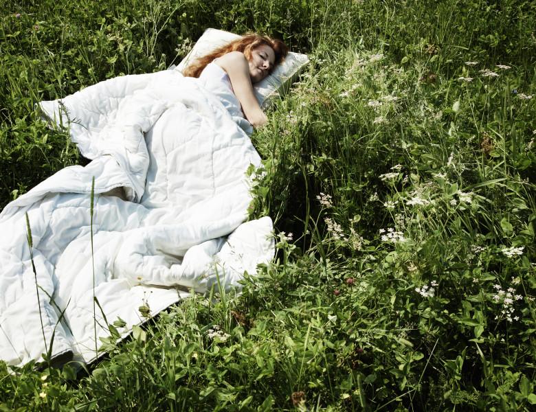 pat in iarba