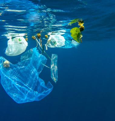 poluarea apelor cu plastic